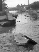 Venice Canals Before the Restoration