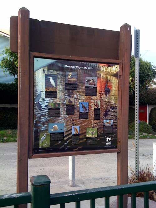 """""""MIGRATORY BIRDS OF THE VENICE CANALS"""" DISPLAY INSTALLED AT LINNIE PARK ..."""