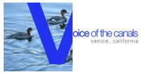 Voice of the Canals